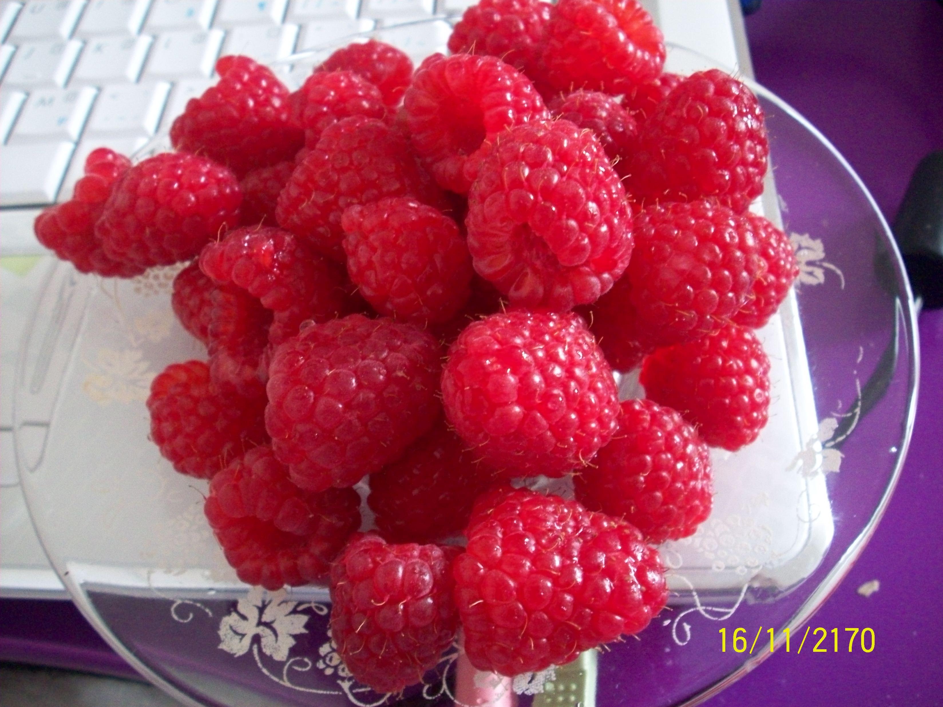 http://foodloader.net/cutie_2010-03-29_Raspberries.jpg