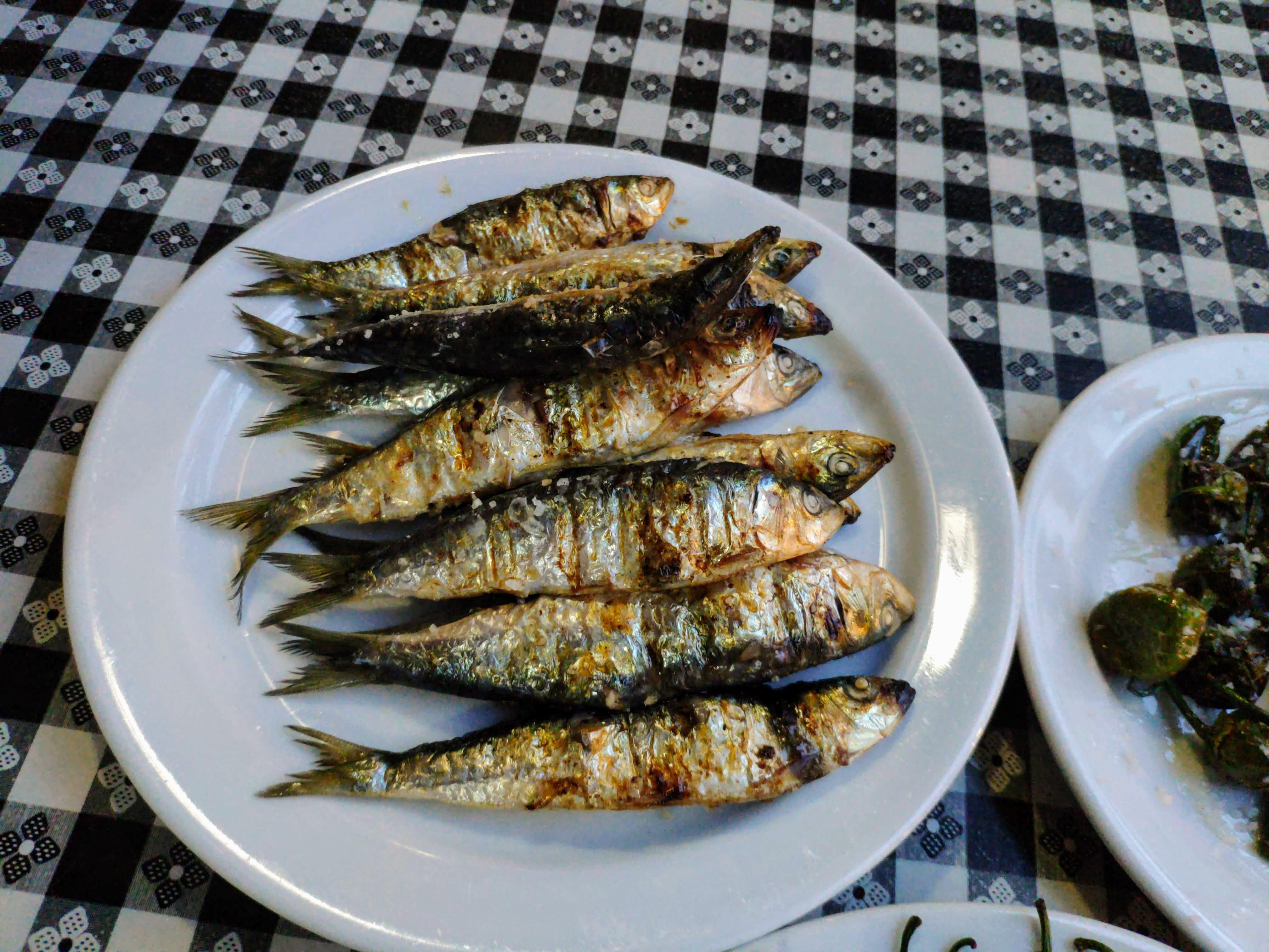 https://foodloader.net/nico_2020-09-15_sardinen.jpg