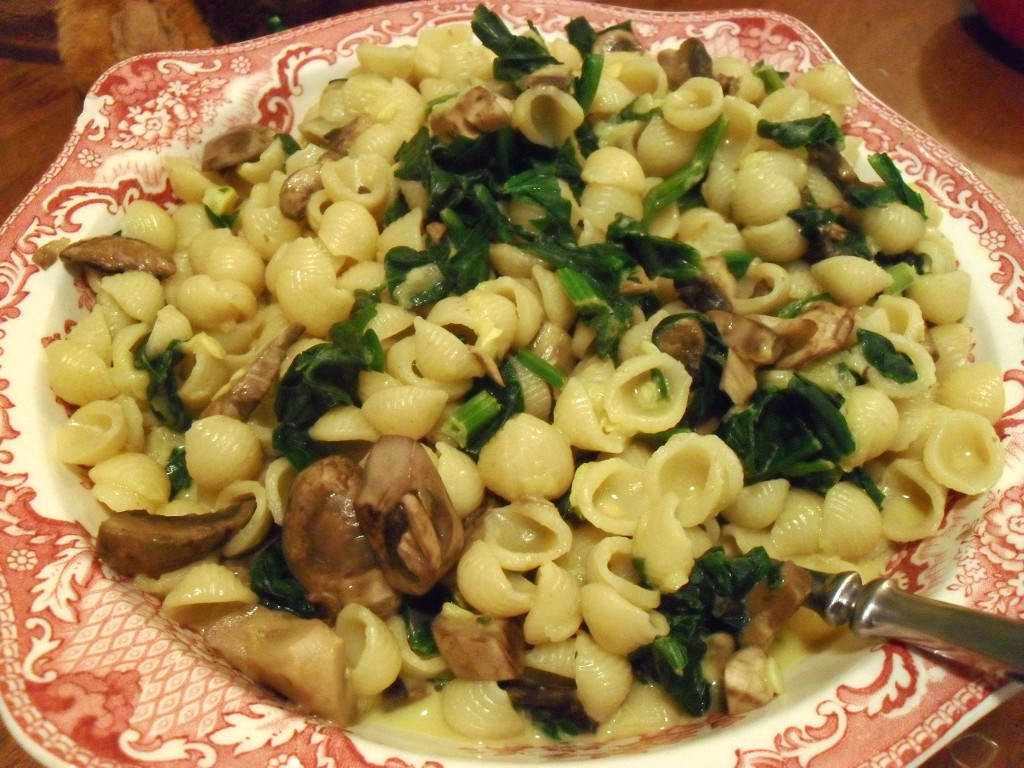 sweetie • 2013-12-25 • annie's macaroni and cheese, spinach, mushrooms, yellow squash